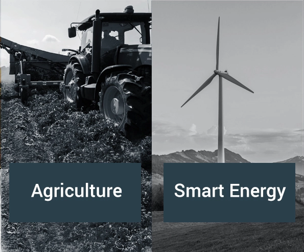 Custom IoT application development for the agriculture and smart energy sectors.